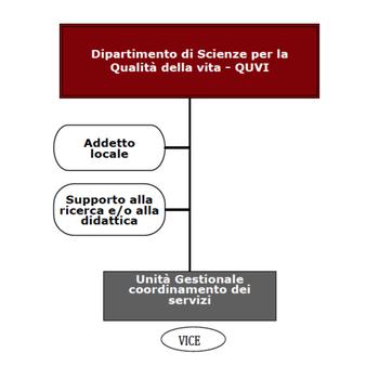 Organigramma del Dipartimento QuVi